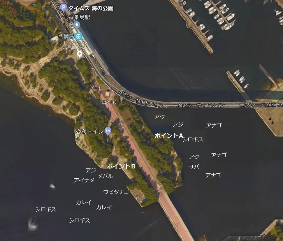 横浜南公園1
